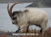 Одеяло для сна,  наполнитель пух кашмирских коз.